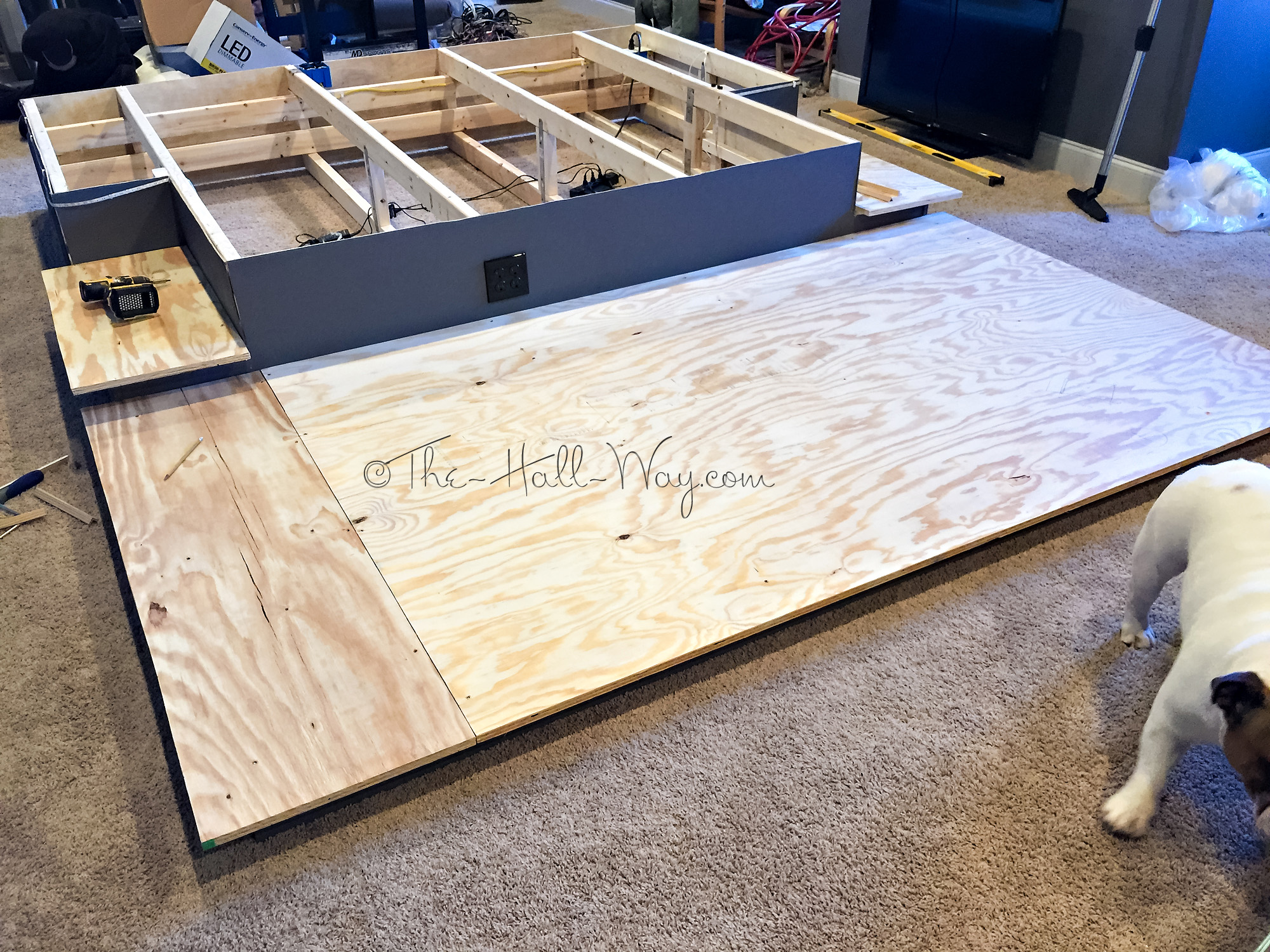 Home theater part 7 the hall way for Diy backyard theater seats